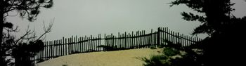 Dune fence 2