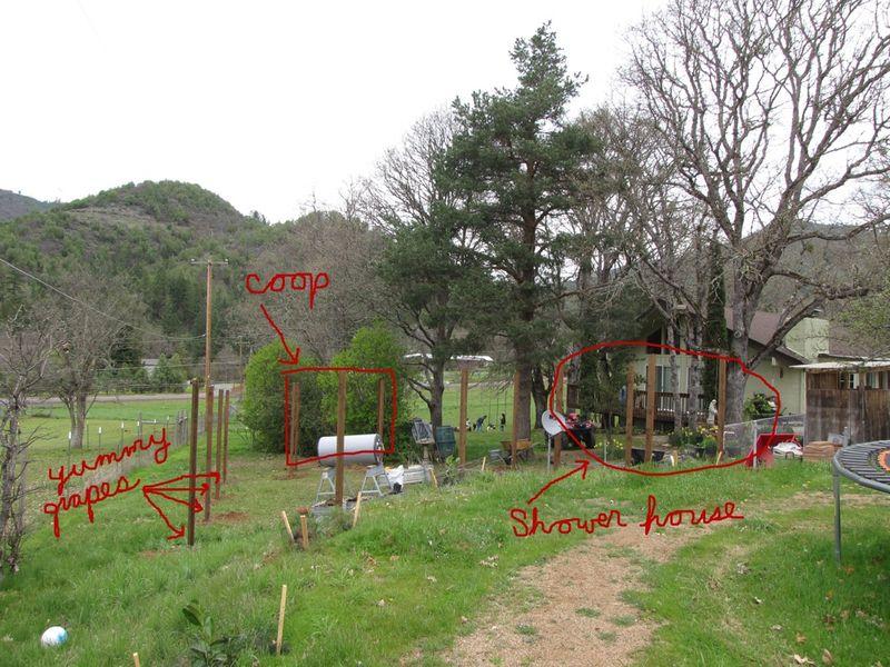 Coop garden