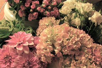 Sue's flowers