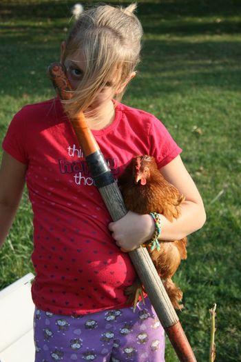 Holding hen