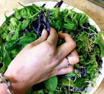 Salad hand