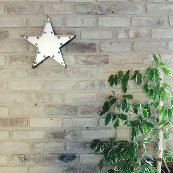 Star + ficus