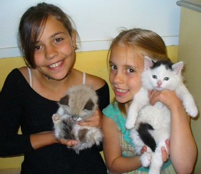 Girls_and_new_kittens_2