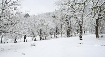 Pure_white_driveway